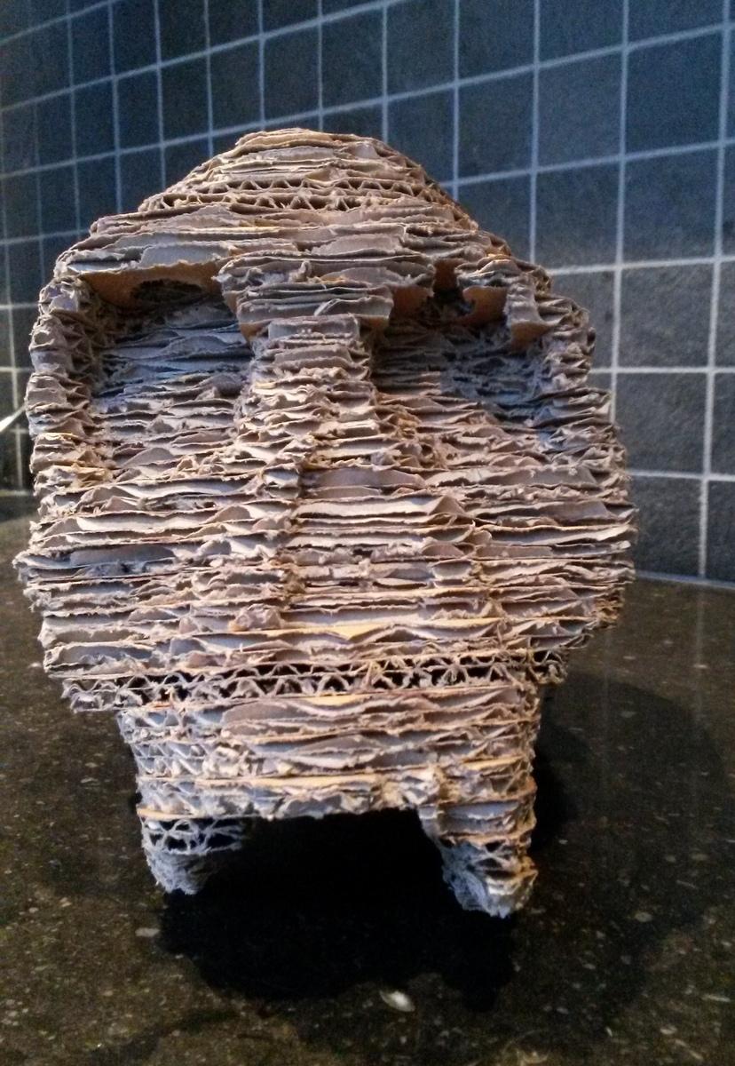 Cardboard Models African Fossils
